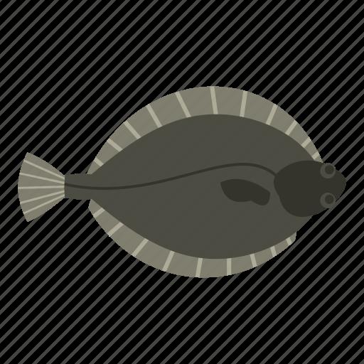 animal, fish, flatfish, flounder, food, fresh, seafood icon