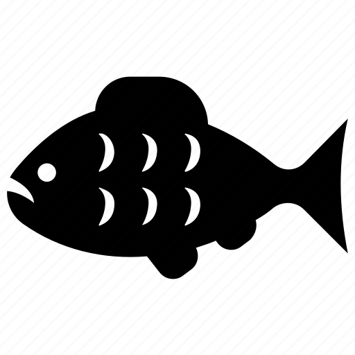 fish, fish food, fishing, seafood, tropical fish icon
