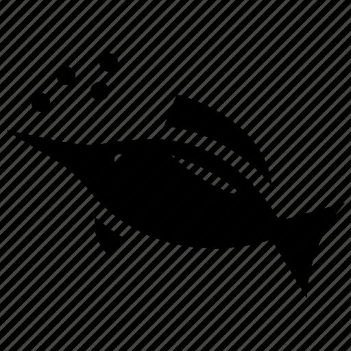 aquatic animal, fish, marlin, seafood, swordfish icon