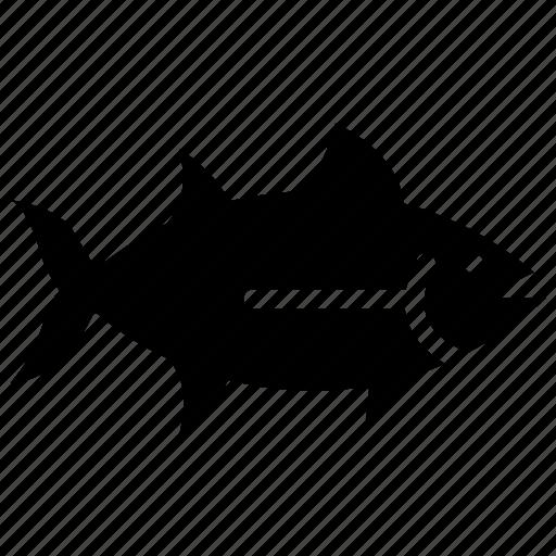 fish, fish food, fishing, haddock, seafood icon