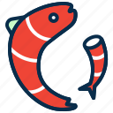 fish, food, sea, sea food, seafood, shrimp icon