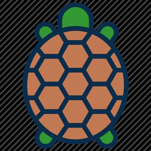 animal, mammal, ocean, reptile, sea, turtle icon