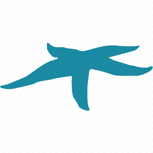 animal, clam, fauna, ocean, sea, starfish icon