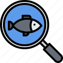 eat, fish, food, magnifier, restaurant, seafood, search icon