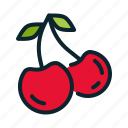 autumn, berry, cherry, fruit, spring, thanksgiving icon