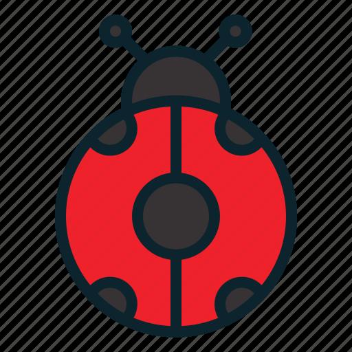 autumn, bug, insect, ladybug, season, winter icon
