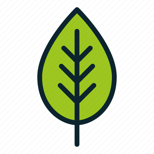 autumn, ecology, environment, fall, leaf, plant, spring icon