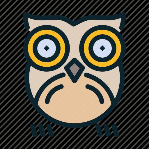 bird, halloween, night, nocturnal, owl icon
