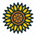blossom, bud, flora, flower, spring, summer, sunflower icon