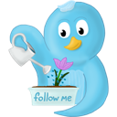 flower, follow, me, spring icon