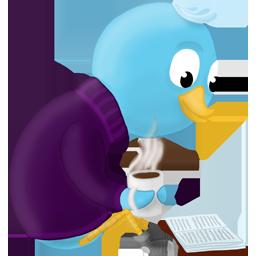 bird, book, read, twitter icon