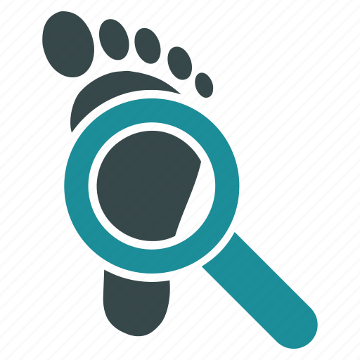 audit, check, explore, glass, magnifying, search, step icon