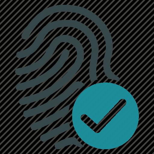 biometric, biometry, finger, fingerprint, identification, identity, trace icon