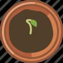 earthen, flowerpot, gardening, growth, plant, seeding, yumminky icon