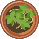 earthen, flowerpot, growth, plant, seeding, vegetation, yumminky icon