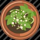 earthen, fertilization, flowerpot, gardening, plant, seeding