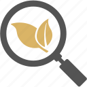 magnify, magnifying glass, organic, research, search icon