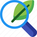 eco, leafe, magnifier, magnifying, organic, search, seo icon