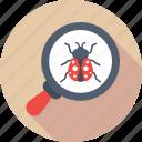 virus scan, magnifier, virus, bug, antivirus