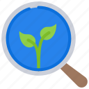 leaf, leaves, organic, plant, search, searching, seo icon