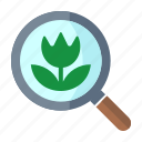 flower, magnifier, search image icon