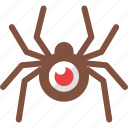 internet, search engine spider, seo, spider, spider tool, web icon