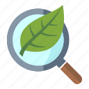 business, internet, internet marketing, leaf, magnifier, organic seo, search engine icon