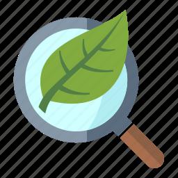 business, internet, internet marketing, leaf, magnifier, organic seo, search engine icon