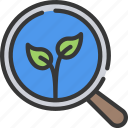 leaf, leaves, organic, plant, search, searching, seo