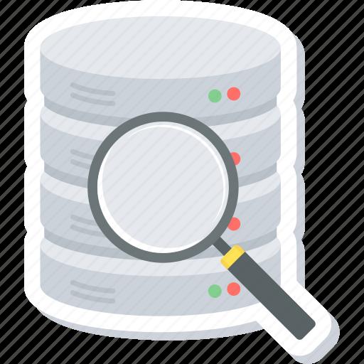 data, find, search, storage, view icon