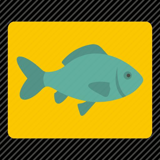 fish, fishing, food, fresh, healthy, nature, sea icon