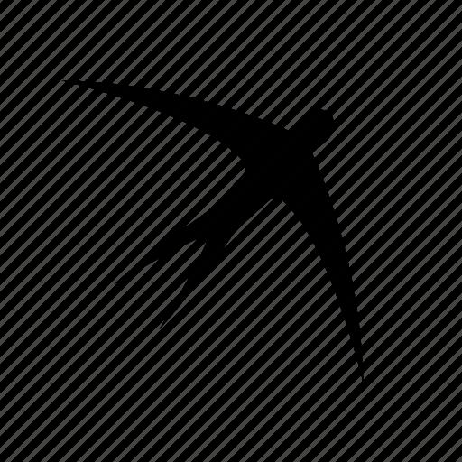 bird, flying, martlet, nature, swallow, swift, tweet icon