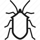 beetle, bug, bugs, insect icon