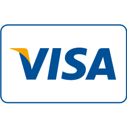 card, cash, checkout, online shopping, payment method, service, visa icon