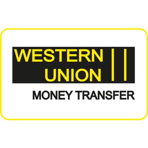Card Checkout Money Transfer Online Ping Payment Method Service Western Union Icon