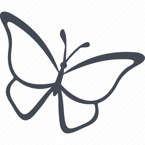 asia, butterfly, country, republic, singapore, singapore attractions icon