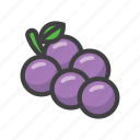 fruit, fruit game, game, grapes, slot machine icon