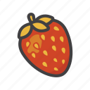 fruit, fruit game, game, strawberry icon