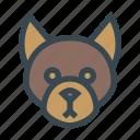 animal, dog, domestic, head, pet icon