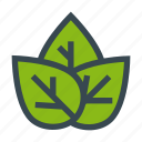 eco, ecology, leafs, nature, plants icon