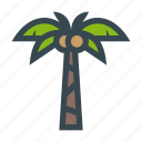 beach, coconut, nature, palm, plant, tree