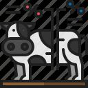 livestock, animal, cow, farm, data, cattle, analytics