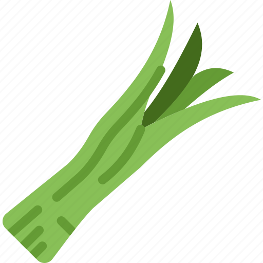 cooking, food, gastronomy, green, onion icon