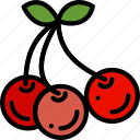 cherries, cooking, food, gastronomy icon