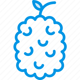 cooking, food, gastronomy, raspberry icon