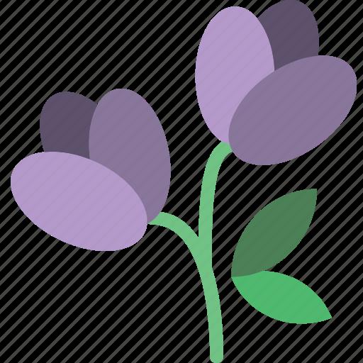 celebration, festivity, flower, holiday, snowbell, spring icon