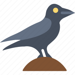 bird, celebration, festivity, halloween, holiday, night, raven icon