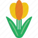 celebration, festivity, flower, holiday, spring, tulip icon