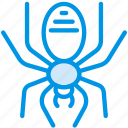 celebration, festivity, halloween, holiday, spider icon