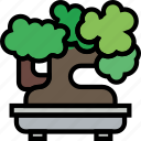 belongings, bonsai, furniture, households icon